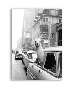 "5719 1d28f11c16349ce30652f290a109fc63 247x296 - wall-decor, decor - ""Lama in New York City"" Canvas"